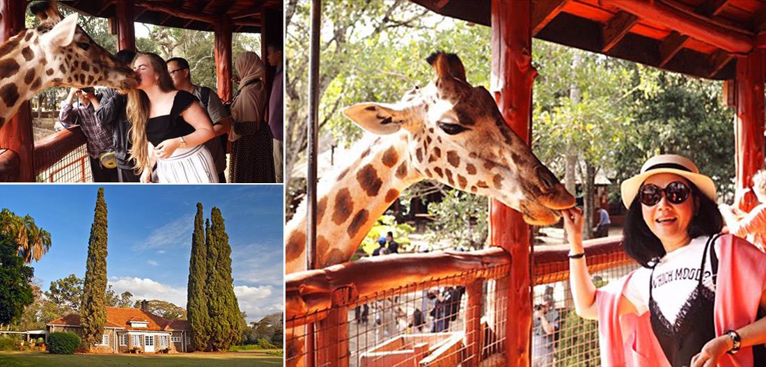 維多利亞瀑布 / 尚比西河鐵路橋