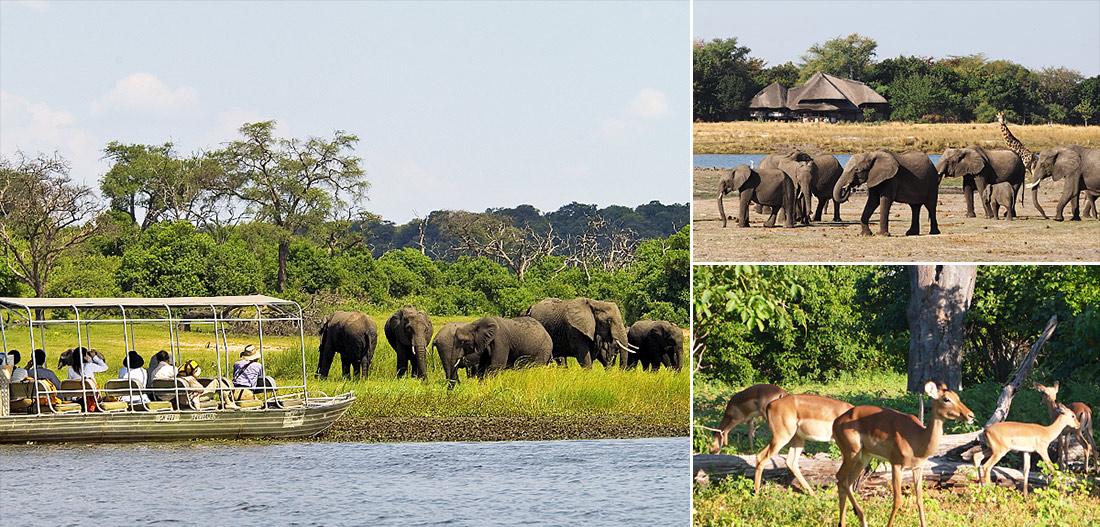辛巴威維多利亞瀑布